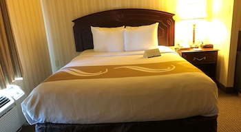 Business Suite, 1 Queen Bed with Sofa bed, Non Smoking