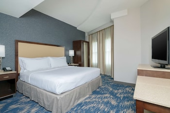 Premium Suite, 1 King Bed, Non Smoking (Conference)