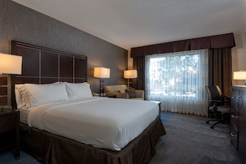 Room, 1 Queen Bed, Accessible, Bathtub (Hearing, Mobility)