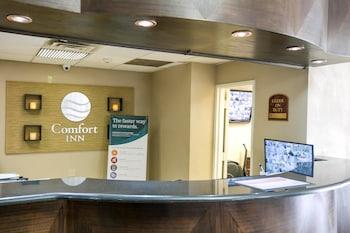 Lobby at Comfort Inn in Edgewater