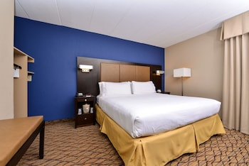 Room, 1 King Bed, Non Smoking (Wheelchair, Roll-In Shower)