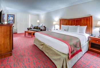梅泰裏紐澳良機場溫德姆華美達飯店 Ramada by Wyndham Metairie New Orleans Airport