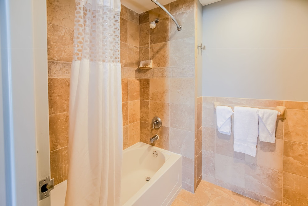 https://i.travelapi.com/hotels/1000000/30000/24800/24770/52f029c2_z.jpg