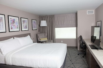 Room, 1 King Bed, Accessible (Roll-in Shower)