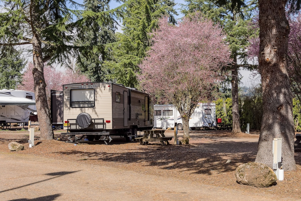 Property Grounds : RV or Truck Parking 40 of 60
