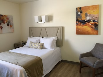 Deluxe Room, 1 Queen Bed, Refrigerator & Microwave