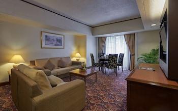 馬來西亞市中心頂峰飯店