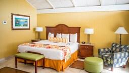 Standard Oda, 1 En Büyük (king) Boy Yatak, Buzdolabı Ve Mikrodalga, Koy Manzaralı