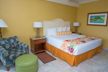 Standard Oda, 1 En Büyük (king) Boy Yatak, Buzdolabı Ve Mikrodalga, Marina Manzaralı