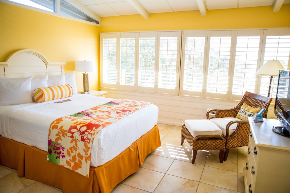 Standard Room, 1 King Bed, Refrigerator & Microwave, Bay View