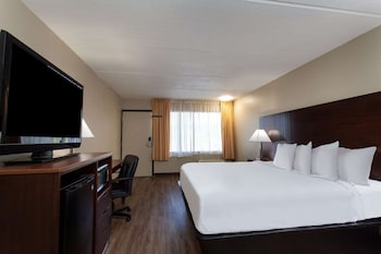 Room, 1 King Bed, Accessible, Smoking (Mobility/Hearing, Roll-in shower)