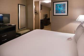 Suite, 1 King Bed, Non Smoking (Feature)