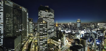 MITSUI GARDEN HOTEL GINZA PREMIER View from Property