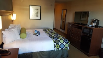 Standard Room, 1 King Bed, Refrigerator & Microwave, Courtyard View