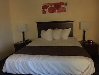 Standard Room, 1 Queen Bed, Accessible, Bathtub (Pet Friendly)