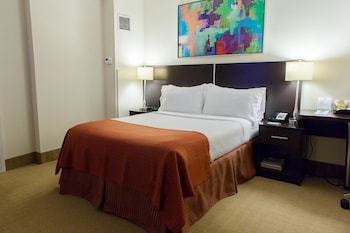 Room, 1 Queen Bed, Accessible, Non Smoking (Wheelchair Roll-In Shower)