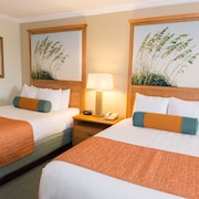 Hot Destination at Sarasota