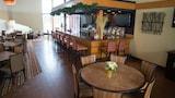 Cedar Falls Hotels