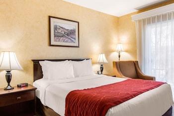 Comfort Inn Escondido San Diego North County - Guestroom View  - #0