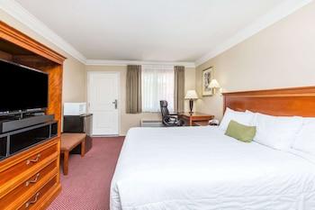 Room, 1 King Bed, Refrigerator