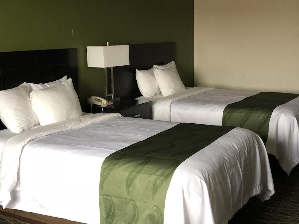 퀄리티 인 & 스위트(Quality Inn & Suites) Hotel Image 6 - Guestroom