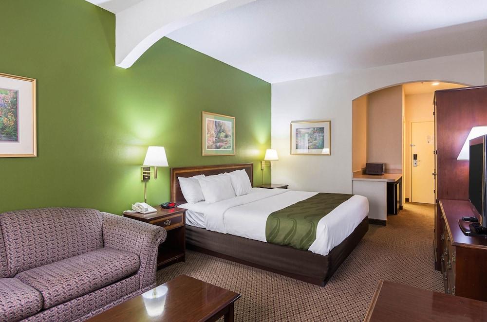 퀄리티 인 & 스위트(Quality Inn & Suites) Hotel Image 11 - Guestroom
