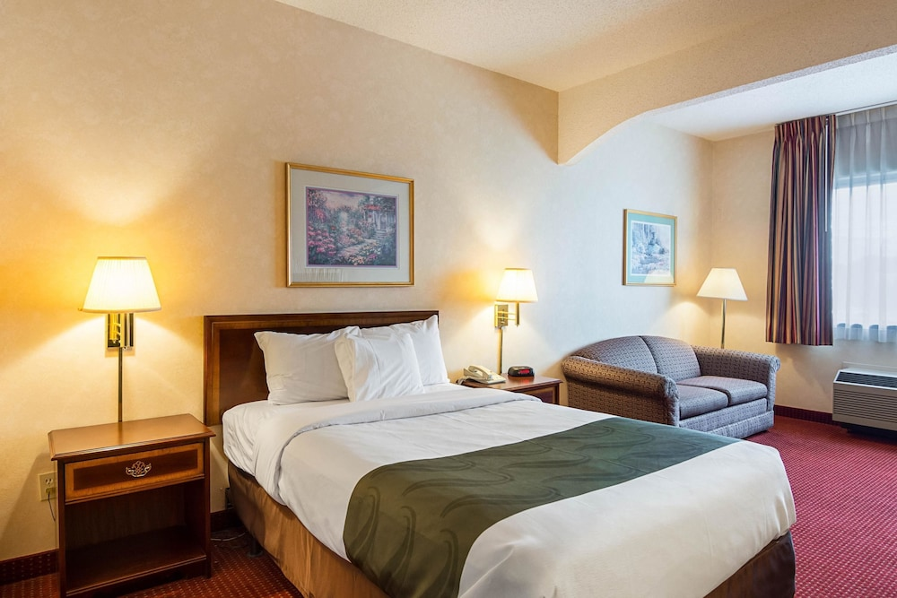 퀄리티 인 & 스위트(Quality Inn & Suites) Hotel Image 17 - Guestroom