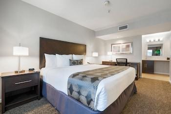 Standard Studio Suite, 1 Bedroom