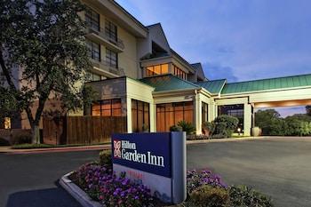聖安東尼奧機場希爾頓花園飯店 Hilton Garden Inn San Antonio Airport