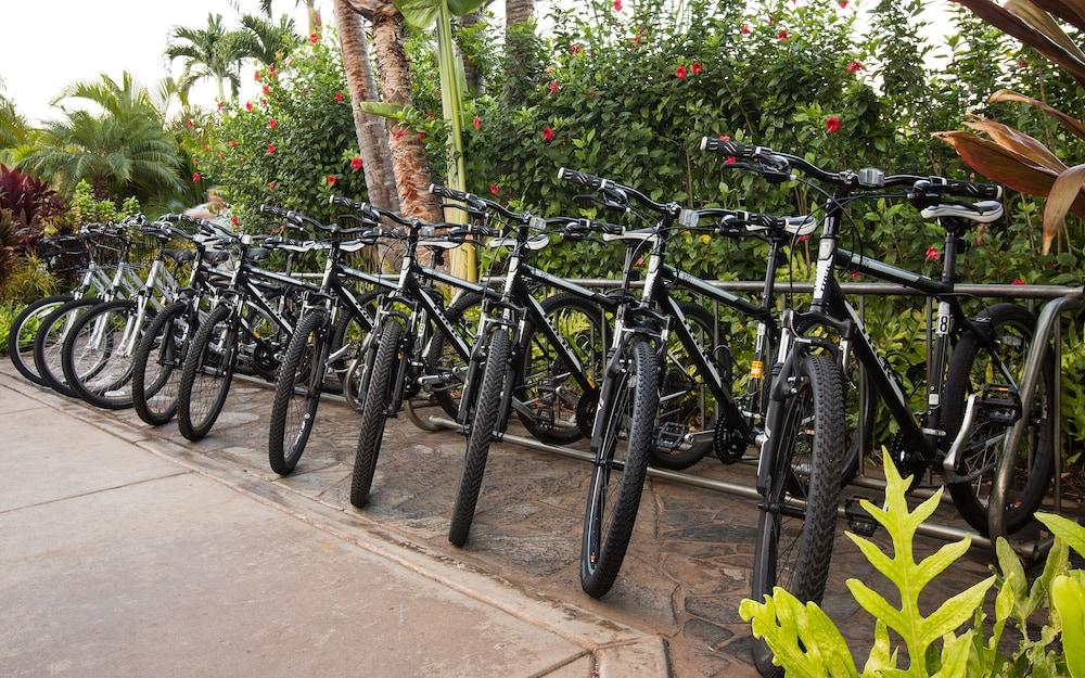 호텔이미지_Bicycling