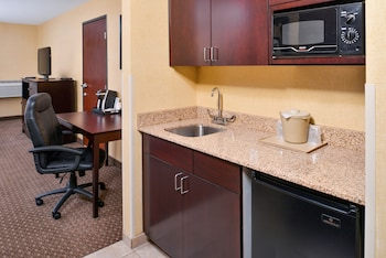 Room, 1 King Bed, Non Smoking (Wet Bar)