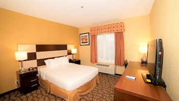 Suite, 1 Queen Bed, Non Smoking, Refrigerator & Microwave (Shower Only;with Sofabed)
