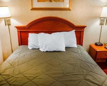 Hotel - Rodeway Inn Dillsburg