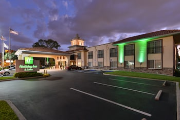 Holiday Inn Hotel & Suites Tampa North - Busch Gardens Area
