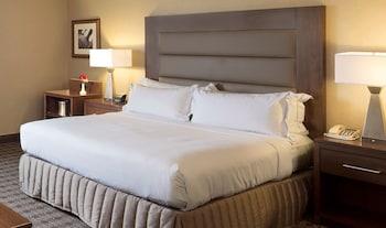 Guestroom at Hilton Crystal City at Washington Reagan National Airport in Arlington