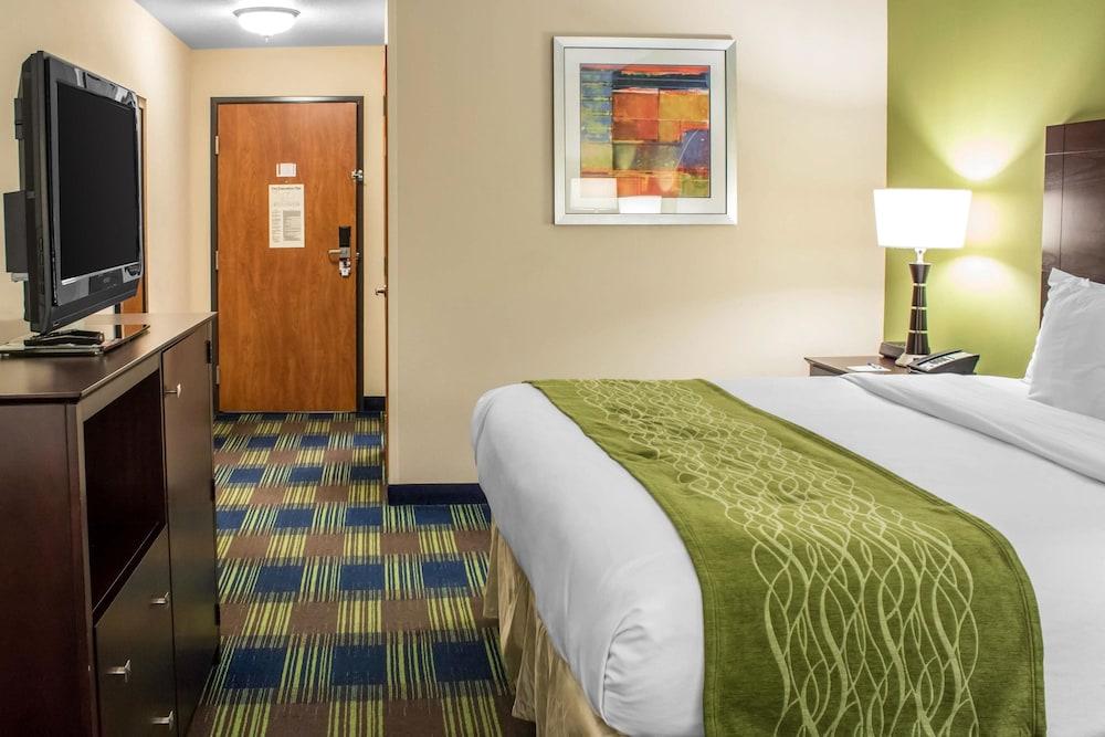 컴포트 인 앙키니 - 디모인(Comfort Inn Ankeny - Des Moines) Hotel Image 9 - Guestroom