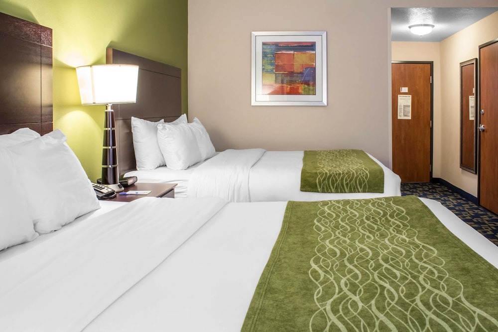 컴포트 인 앙키니 - 디모인(Comfort Inn Ankeny - Des Moines) Hotel Image 10 - Guestroom