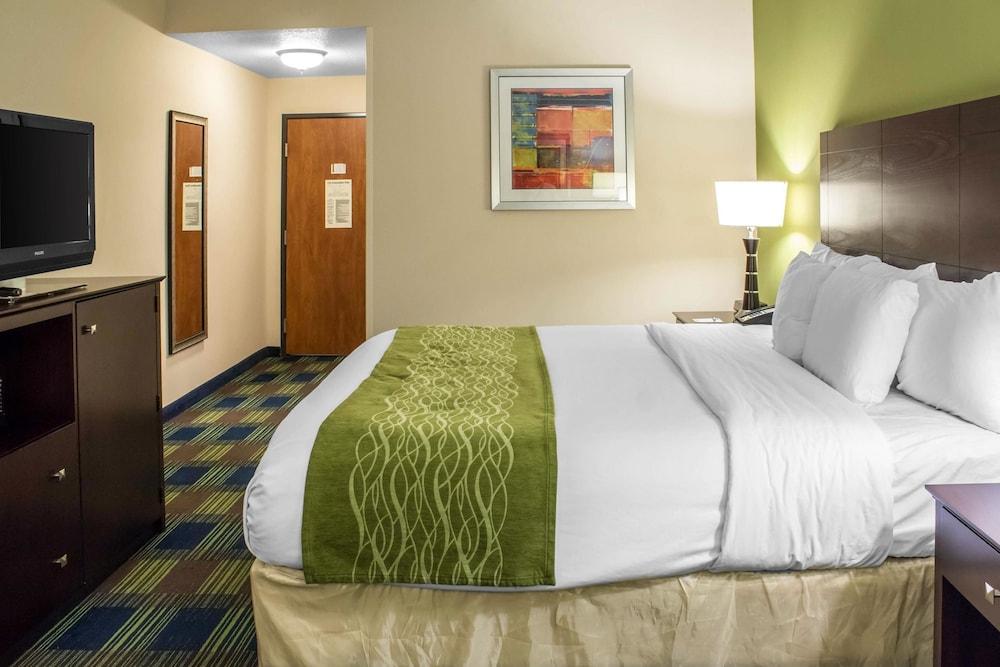 컴포트 인 앙키니 - 디모인(Comfort Inn Ankeny - Des Moines) Hotel Image 11 - Guestroom