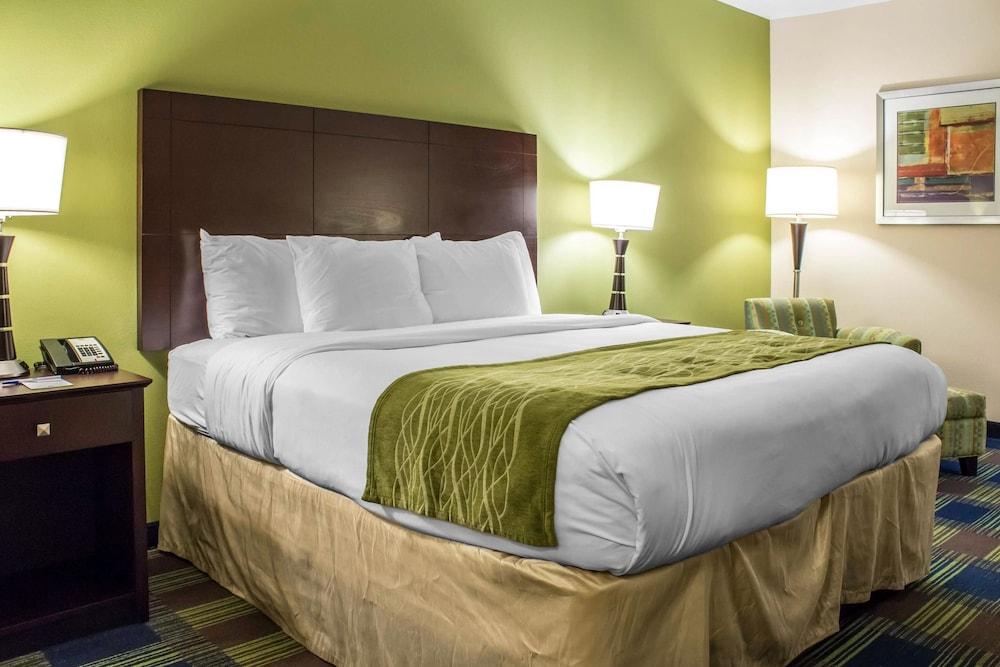 컴포트 인 앙키니 - 디모인(Comfort Inn Ankeny - Des Moines) Hotel Image 24 - Guestroom