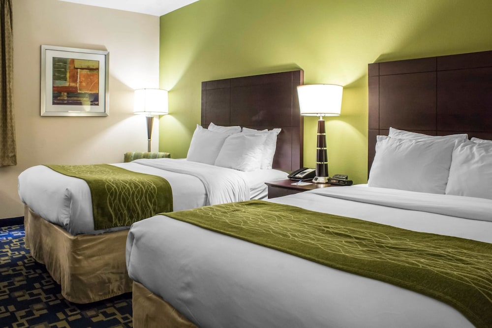 컴포트 인 앙키니 - 디모인(Comfort Inn Ankeny - Des Moines) Hotel Image 15 - Guestroom
