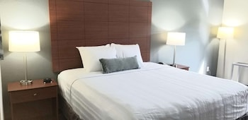 Standard Room, 1 King Bed, Accessible, Refrigerator & Microwave (Bathtub/Shower Combo Mobility)