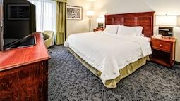 Hampton Inn by Hilton Charlotte/Matthews