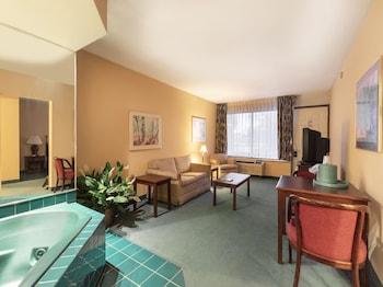 宅邸景觀套房旅館 Mansion View Inn and Suite