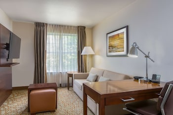 Studio Suite, 1 Queen Bed, Accessible (Mobility & Hearing, Roll-in Shower)