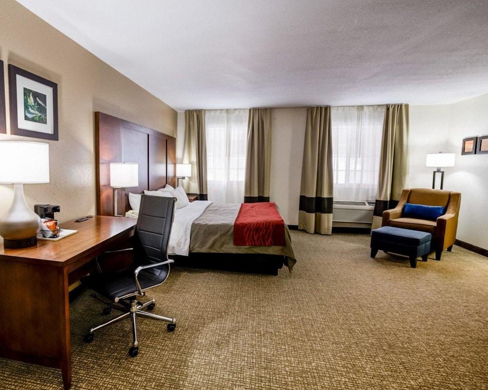 컴포트 인 커니 - 리버티(Comfort Inn Kearney - Liberty) Hotel Image 20 - Guestroom