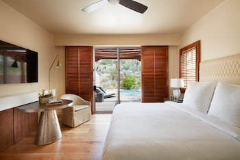 Oasis Accessible Suite with king bed