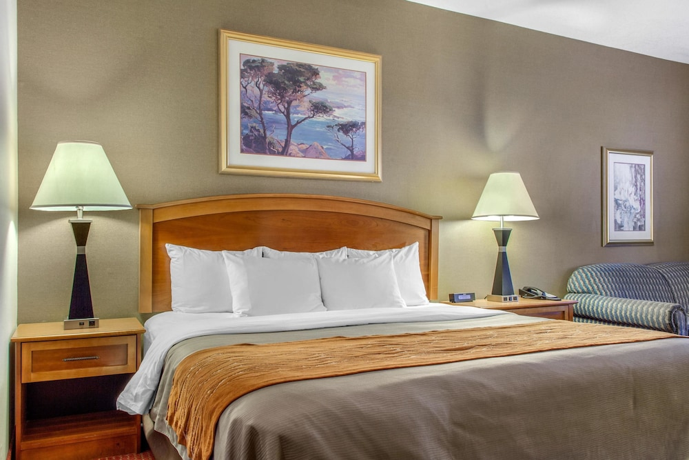컴포트 인 & 스위트(Comfort Inn And Suites) Hotel Image 26 - Guestroom