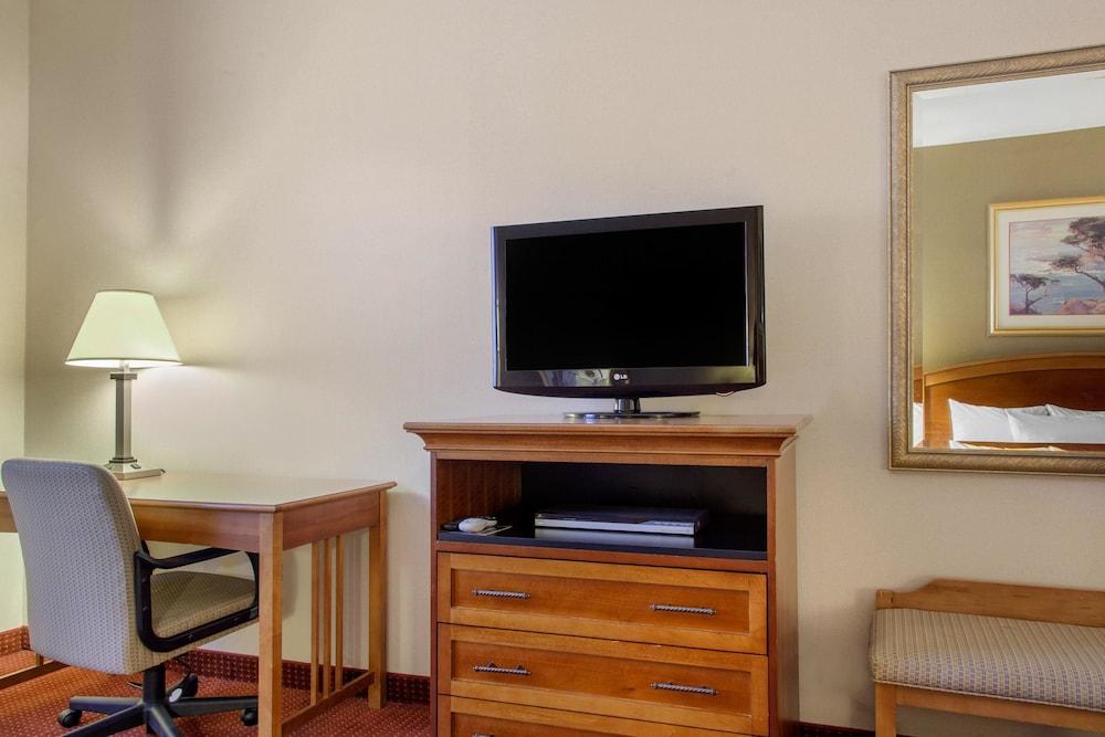 컴포트 인 & 스위트(Comfort Inn And Suites) Hotel Image 7 - Guestroom