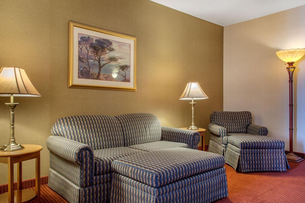 컴포트 인 & 스위트(Comfort Inn And Suites) Hotel Image 35 - Guestroom
