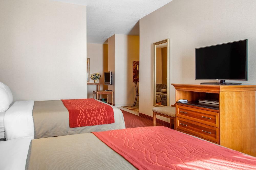 컴포트 인 & 스위트(Comfort Inn And Suites) Hotel Image 20 - Guestroom